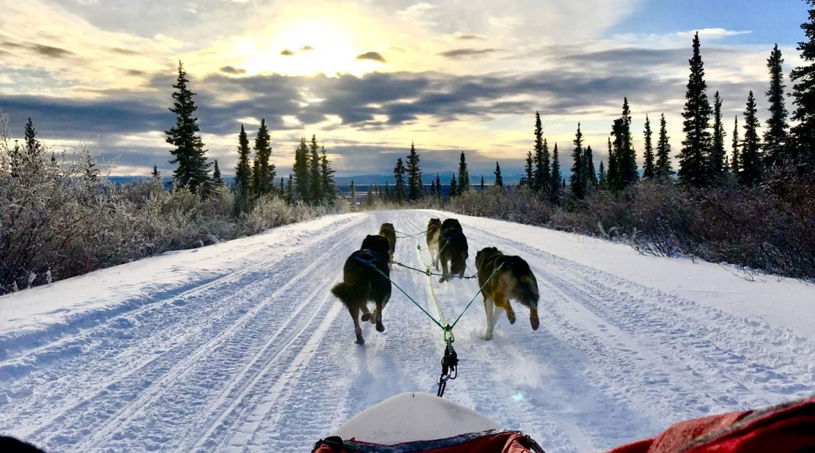 Dog Sledding in Fort McPherson