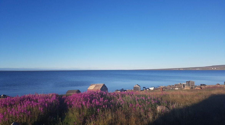 View of Baker Lake