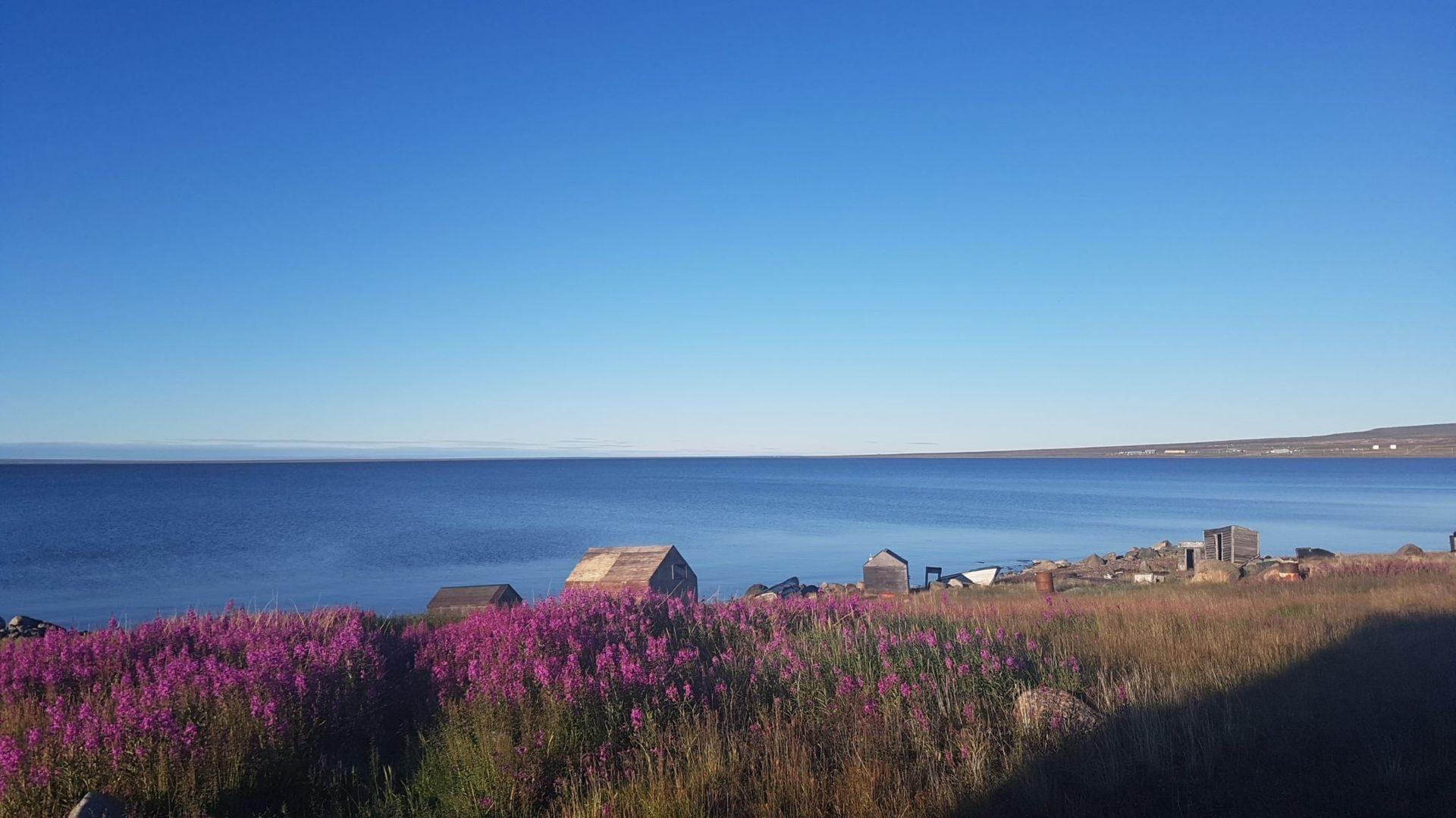Baker Lake View